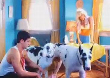 Pies z teledysków Lady GaGi NIE ŻYJE...